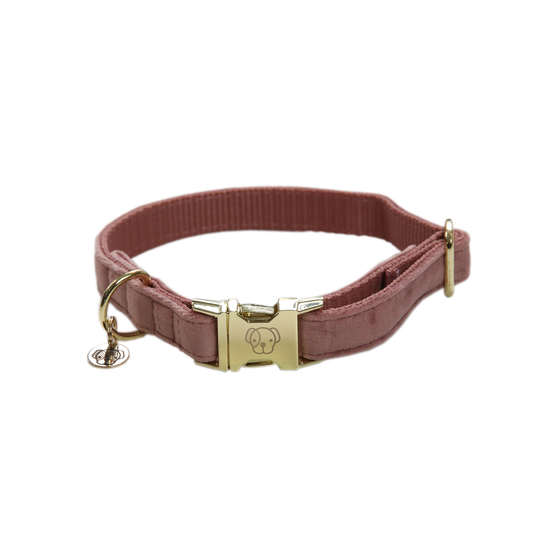 Kentucky Dogwear Velvet Dog Collar Hundehalsband